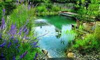 piscina_natural.jpg